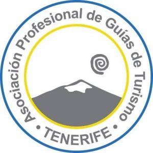Logo of APIT Tenerife