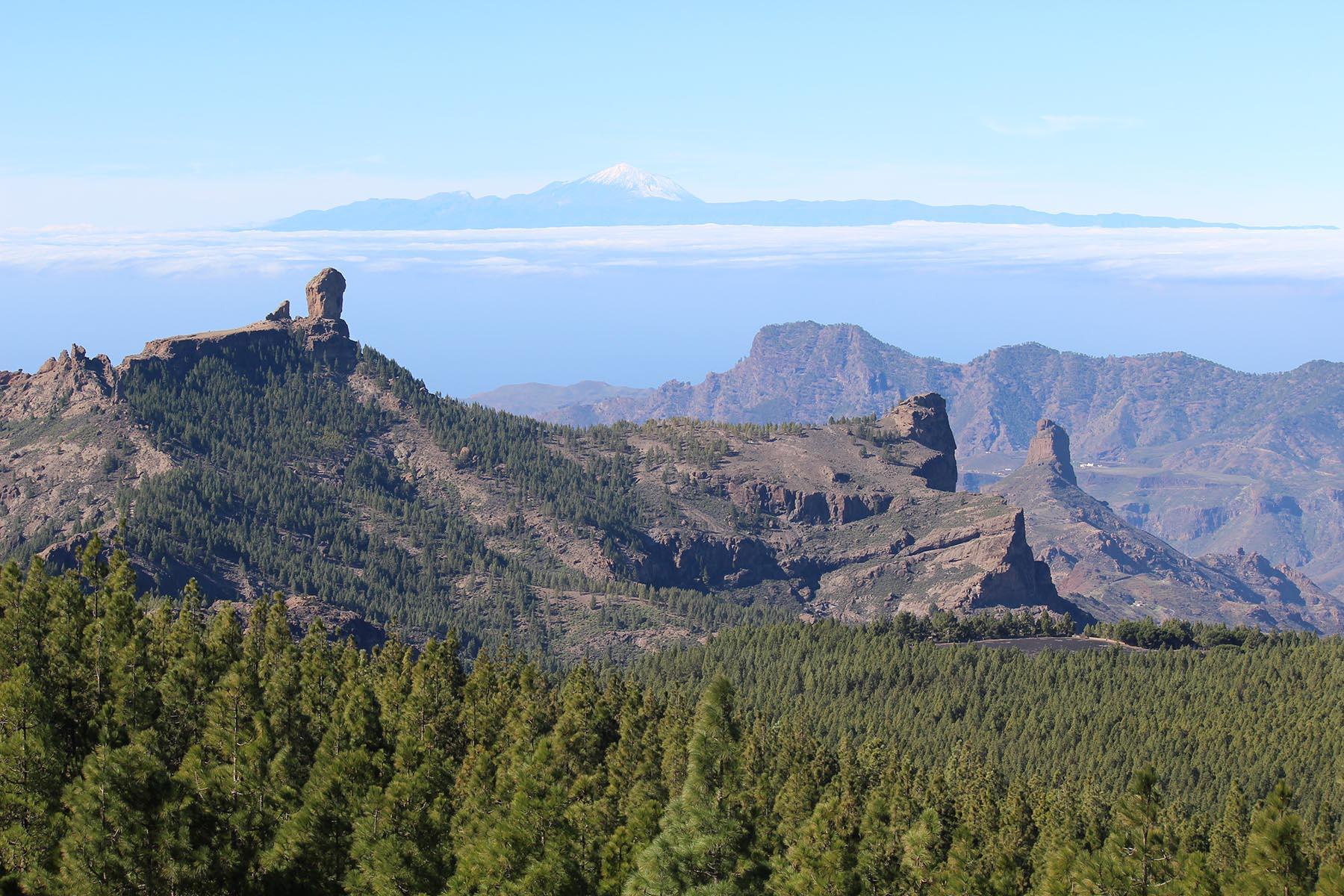 Panoramique sur le Roque Nublo, les pins canariens et le Teide au fond